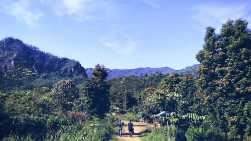Lanskap trek menuju Curug Kembar Sukamakmur Bogor